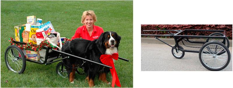 Dog Pulling Cart